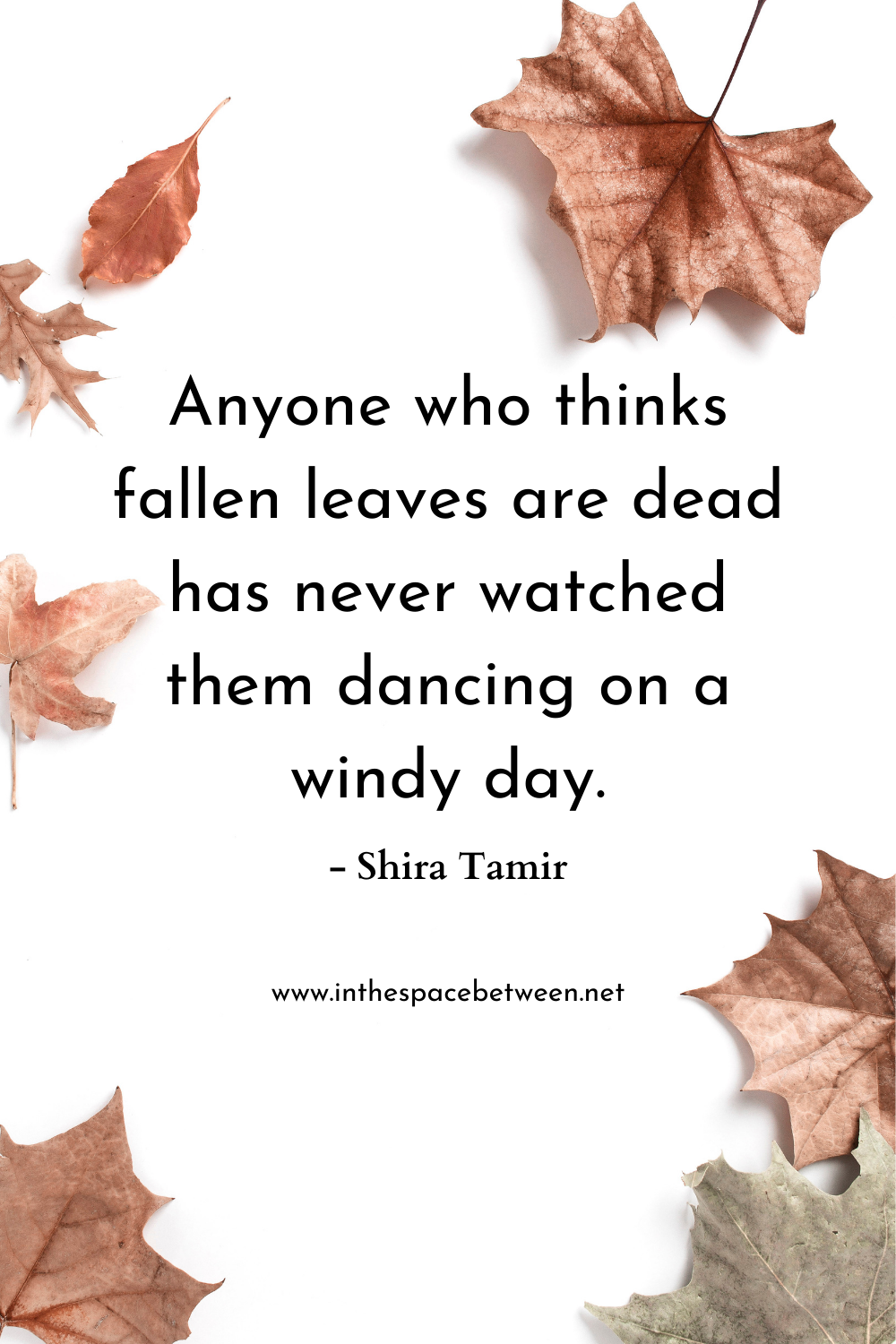 Quote by Shira Tamir about fallen leaves